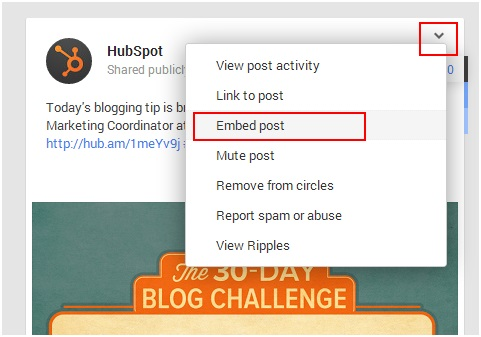 google-plus-embed-post-hubspot